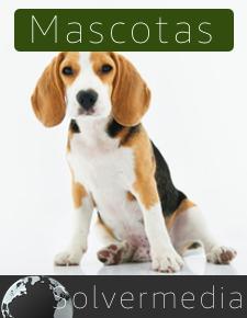 para gestión de Peluquerías de Mascotas Solvermedia
